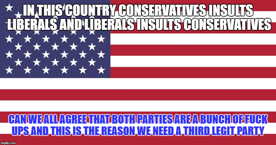 IN THIS COUNTRY CONSERVATIVES INSULTS LIBERALS AND LIBERALS INSULTS CONSERVATIVES CAN WE ALL AGREE THAT BOTH PARTIES ARE A BUNCH OF F**K UPS | image tagged in american flag | made w/ Imgflip meme maker