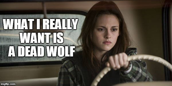 WHAT I REALLY WANT IS A DEAD WOLF | made w/ Imgflip meme maker