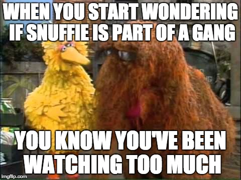 WHEN YOU START WONDERING IF SNUFFIE IS PART OF A GANG YOU KNOW YOU'VE BEEN WATCHING TOO MUCH | image tagged in seasame street | made w/ Imgflip meme maker