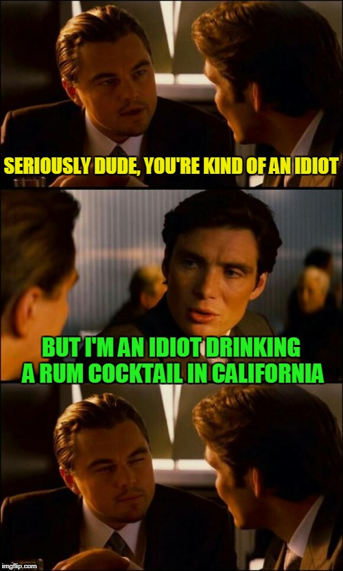 SERIOUSLY DUDE, YOU'RE KIND OF AN IDIOT BUT I'M AN IDIOT DRINKING A RUM COCKTAIL IN CALIFORNIA | made w/ Imgflip meme maker