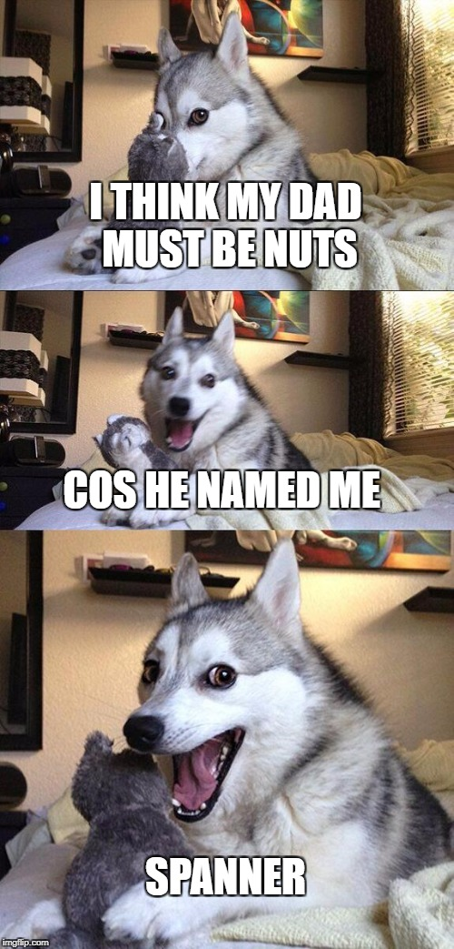 Bad Pun Dog Meme | I THINK MY DAD MUST BE NUTS COS HE NAMED ME SPANNER | image tagged in memes,bad pun dog | made w/ Imgflip meme maker