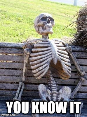Waiting Skeleton Meme | YOU KNOW IT | image tagged in memes,waiting skeleton | made w/ Imgflip meme maker