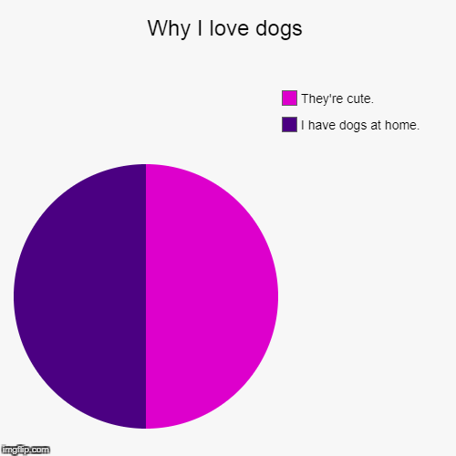 Why I love dogs | I have dogs at home., They're cute. | image tagged in funny,pie charts | made w/ Imgflip pie chart maker