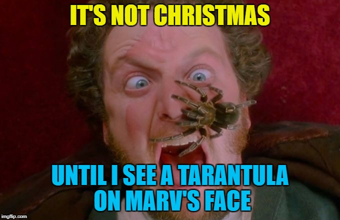 Or until Gus Polinski polka king of the Midwest comes to the rescue... :) | IT'S NOT CHRISTMAS UNTIL I SEE A TARANTULA ON MARV'S FACE | image tagged in home alone marv spider,memes,christmas,home alone,movies,wet bandits | made w/ Imgflip meme maker