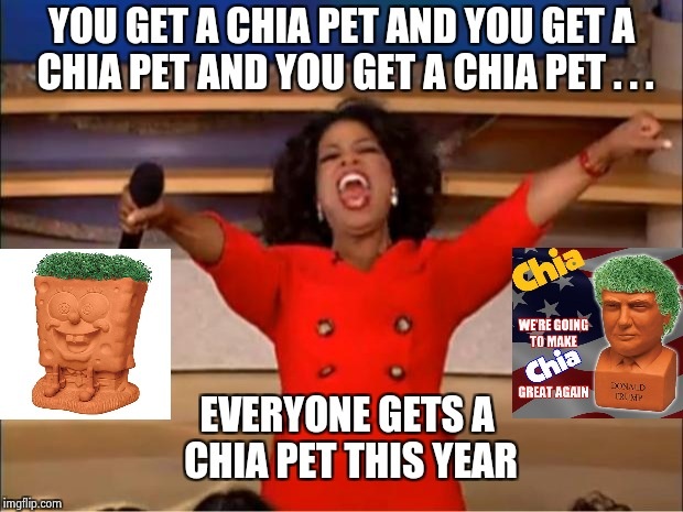Either that or socks and underwear | YOU GET A CHIA PET AND YOU GET A CHIA PET AND YOU GET A CHIA PET . . . EVERYONE GETS A CHIA PET THIS YEAR | image tagged in memes,oprah you get a,gifts,cheapskate,christmas | made w/ Imgflip meme maker