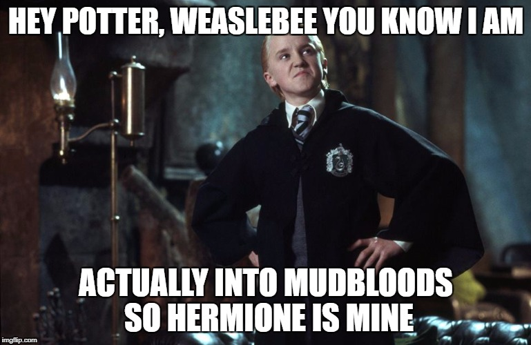 Harry Potter Draco | HEY POTTER, WEASLEBEE YOU KNOW I AM ACTUALLY INTO MUDBLOODS SO HERMIONE IS MINE | image tagged in harry potter draco | made w/ Imgflip meme maker