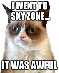 I WENT TO SKY ZONE... IT WAS AWFUL | image tagged in memes | made w/ Imgflip meme maker
