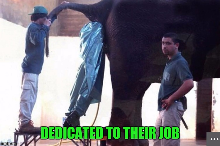 DEDICATED TO THEIR JOB | made w/ Imgflip meme maker
