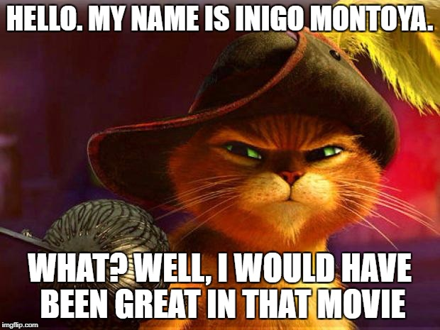 HELLO. MY NAME IS INIGO MONTOYA. WHAT? WELL, I WOULD HAVE BEEN GREAT IN THAT MOVIE | image tagged in puss in boots | made w/ Imgflip meme maker