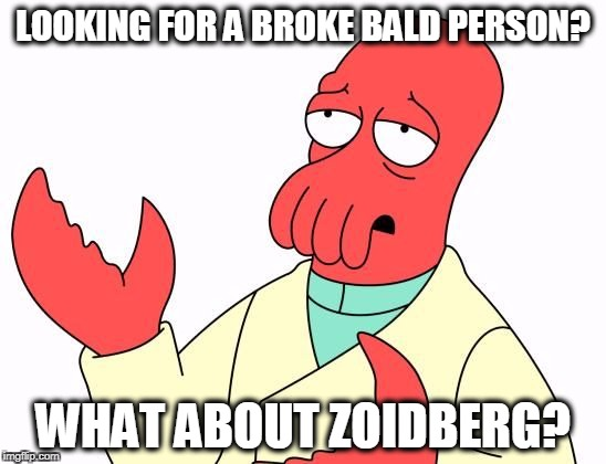 Zoid | LOOKING FOR A BROKE BALD PERSON? WHAT ABOUT ZOIDBERG? | image tagged in zoid | made w/ Imgflip meme maker