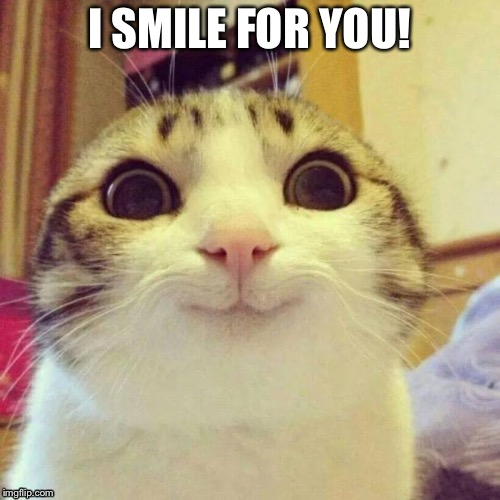 Smiling Cat Meme | I SMILE FOR YOU! | image tagged in memes,smiling cat | made w/ Imgflip meme maker