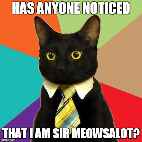an add for denis's sir meowsalot stuffed animal | HAS ANYONE NOTICED THAT I AM SIR MEOWSALOT? | image tagged in memes,business cat | made w/ Imgflip meme maker
