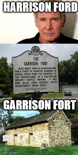 Know the difference | HARRISON FORD GARRISON FORT | image tagged in harrison ford | made w/ Imgflip meme maker