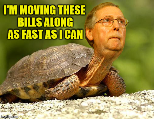 McConnell Turtle | I'M MOVING THESE BILLS ALONG AS FAST AS I CAN | image tagged in mcconnell turtle,memes,scumbag government | made w/ Imgflip meme maker
