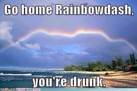 Somepony had a little too much cider! | image tagged in memes,rainbow dash,go home you're drunk | made w/ Imgflip meme maker