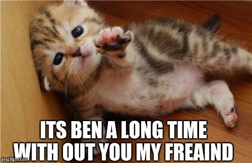 Help Me Kitten | ITS BEN A LONG TIME WITH OUT YOU MY FREAIND | image tagged in help me kitten | made w/ Imgflip meme maker