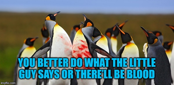 Penguin Bloodshed | YOU BETTER DO WHAT THE LITTLE GUY SAYS OR THERE'LL BE BLOOD | image tagged in penguin bloodshed | made w/ Imgflip meme maker