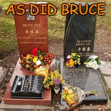 AS DID BRUCE | image tagged in bruce lee | made w/ Imgflip meme maker