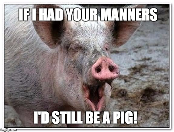 IF I HAD YOUR MANNERS I'D STILL BE A PIG! | made w/ Imgflip meme maker