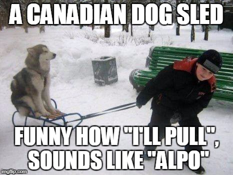 "A CANADIAN DOG SLED FUNNY HOW ""I'LL PULL"", SOUNDS LIKE ""ALPO"" 