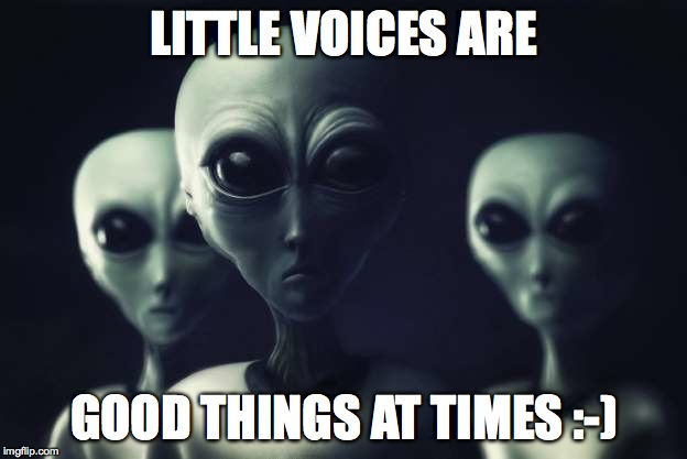 LITTLE VOICES ARE GOOD THINGS AT TIMES :-) | made w/ Imgflip meme maker