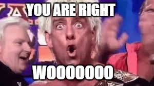 YOU ARE RIGHT WOOOOOOO | made w/ Imgflip meme maker