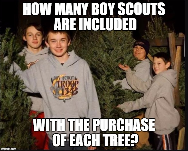 Boy Scout Christmas Tree Sales | HOW MANY BOY SCOUTS ARE INCLUDED WITH THE PURCHASE OF EACH TREE? | image tagged in boy scouts,christmas tree,pedobear,boys | made w/ Imgflip meme maker