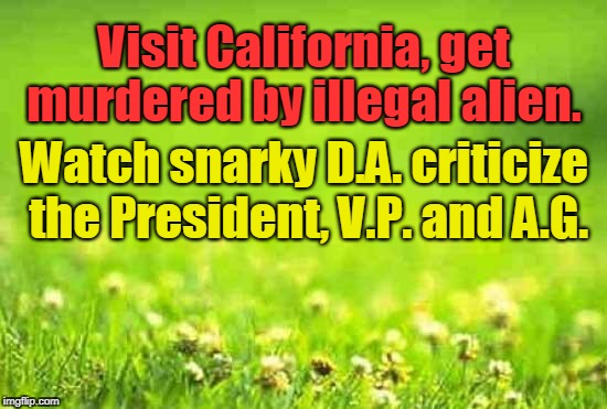 green background | Visit California, get murdered by illegal alien. Watch snarky D.A. criticize the President, V.P. and A.G. | image tagged in green background | made w/ Imgflip meme maker