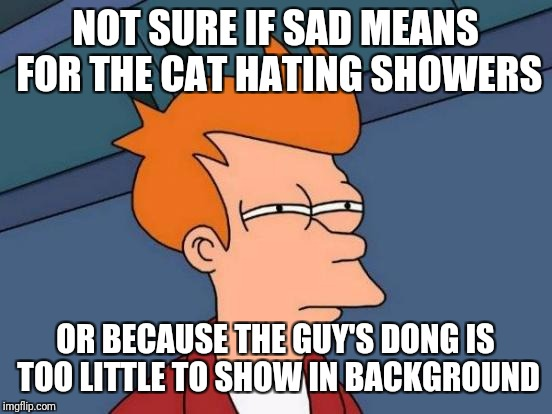 Futurama Fry Meme | NOT SURE IF SAD MEANS FOR THE CAT HATING SHOWERS OR BECAUSE THE GUY'S DONG IS TOO LITTLE TO SHOW IN BACKGROUND | image tagged in memes,futurama fry | made w/ Imgflip meme maker
