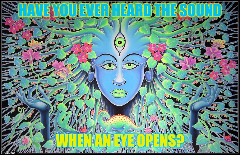 HAVE YOU EVER HEARD THE SOUND WHEN AN EYE OPENS? | made w/ Imgflip meme maker