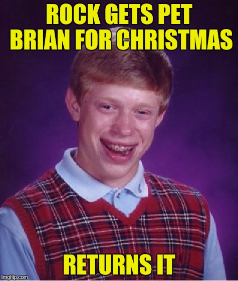 Bad Luck Brian Meme | ROCK GETS PET BRIAN FOR CHRISTMAS RETURNS IT | image tagged in memes,bad luck brian | made w/ Imgflip meme maker