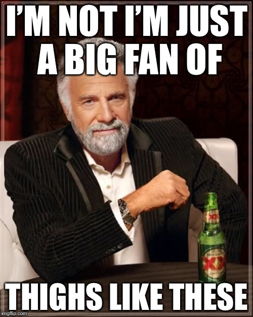 The Most Interesting Man In The World Meme | I'M NOT I'M JUST A BIG FAN OF THIGHS LIKE THESE | image tagged in memes,the most interesting man in the world | made w/ Imgflip meme maker