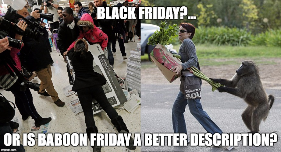 (Human Biology + Mainstream Culture) ÷ IQ = Degree of Baboon Behavior | BLACK FRIDAY?... OR IS BABOON FRIDAY A BETTER DESCRIPTION? | image tagged in black friday,baboon,psychology,stem,animals,stupid people | made w/ Imgflip meme maker