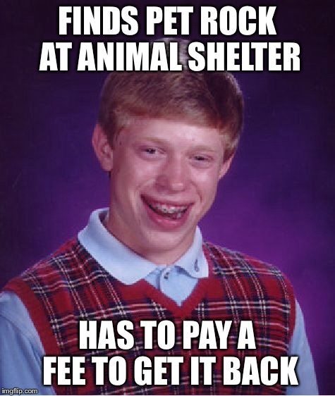 Bad Luck Brian Meme | FINDS PET ROCK AT ANIMAL SHELTER HAS TO PAY A FEE TO GET IT BACK | image tagged in memes,bad luck brian | made w/ Imgflip meme maker