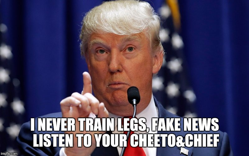 Donald Trump | I NEVER TRAIN LEGS, FAKE NEWS LISTEN TO YOUR CHEETO&CHIEF | image tagged in donald trump | made w/ Imgflip meme maker