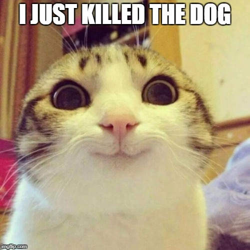 Smiling Cat Meme | I JUST KILLED THE DOG | image tagged in memes,smiling cat | made w/ Imgflip meme maker