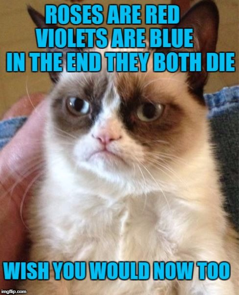 Grumpy Cat | . | image tagged in memes,meme,grumpy cat | made w/ Imgflip meme maker