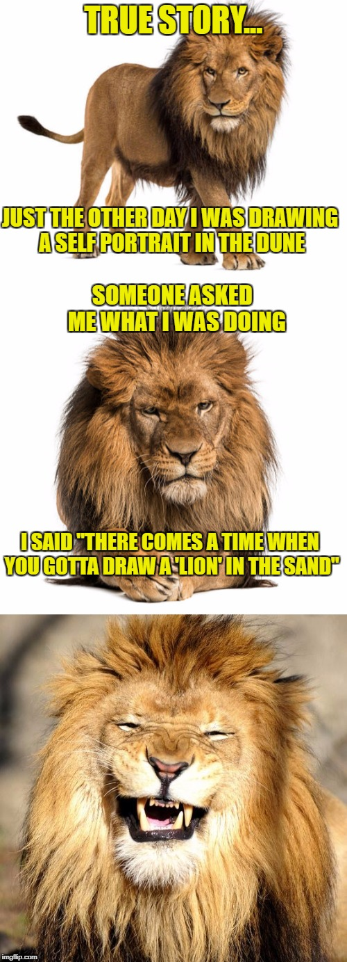 "True Story Lion | TRUE STORY... JUST THE OTHER DAY I WAS DRAWING A SELF PORTRAIT IN THE DUNE SOMEONE ASKED  ME WHAT I WAS DOING I SAID ""THERE COMES A TIME WHE 