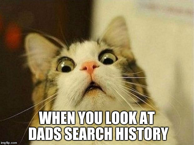 Scared Cat Meme | WHEN YOU LOOK AT DADS SEARCH HISTORY | image tagged in memes,scared cat | made w/ Imgflip meme maker