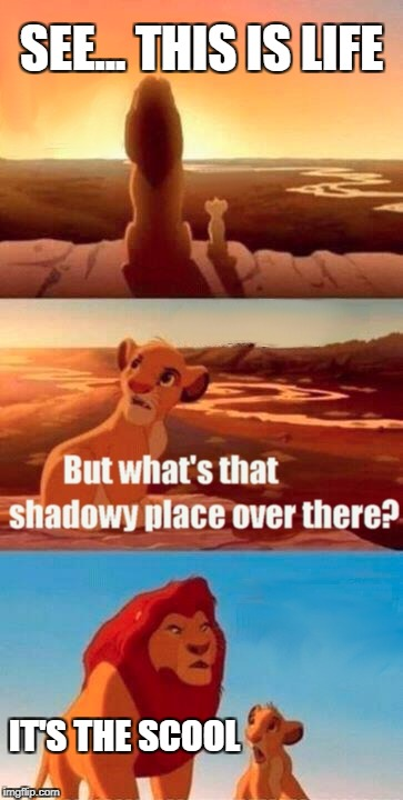 Simba Shadowy Place Meme | SEE... THIS IS LIFE IT'S THE SCOOL | image tagged in memes,simba shadowy place | made w/ Imgflip meme maker