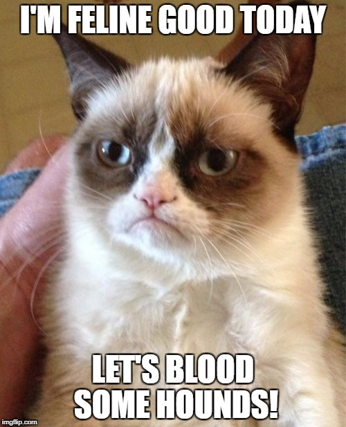 Grumpy Cat Meme | I'M FELINE GOOD TODAY LET'S BLOOD SOME HOUNDS! | image tagged in memes,grumpy cat | made w/ Imgflip meme maker