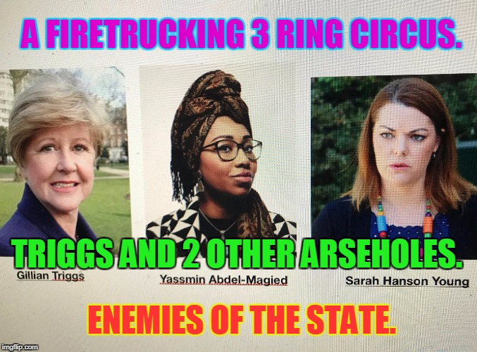 A FIRETRUCKING 3 RING CIRCUS. TRIGGS AND 2 OTHER ARSEHOLES. ENEMIES OF THE STATE. | image tagged in enemies of the state | made w/ Imgflip meme maker