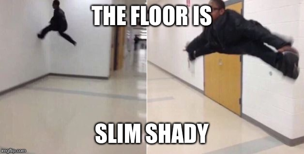 the floor is an eminem reference | THE FLOOR IS SLIM SHADY | image tagged in the floor is | made w/ Imgflip meme maker