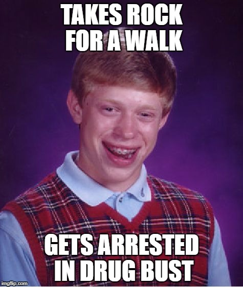 Bad Luck Brian Meme | TAKES ROCK FOR A WALK GETS ARRESTED IN DRUG BUST | image tagged in memes,bad luck brian | made w/ Imgflip meme maker