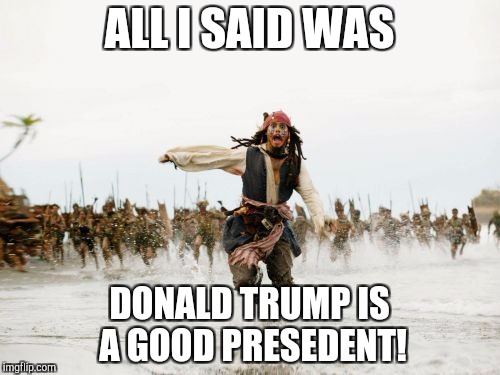 Jack Sparrow Being Chased Meme | ALL I SAID WAS DONALD TRUMP IS A GOOD PRESEDENT! | image tagged in memes,jack sparrow being chased | made w/ Imgflip meme maker