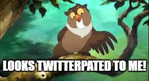 LOOKS TWITTERPATED TO ME! | made w/ Imgflip meme maker