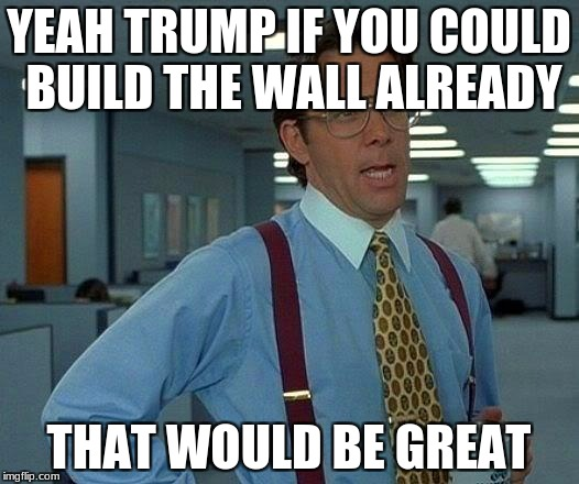 That Would Be Great Meme | YEAH TRUMP IF YOU COULD BUILD THE WALL ALREADY THAT WOULD BE GREAT | image tagged in memes,that would be great | made w/ Imgflip meme maker