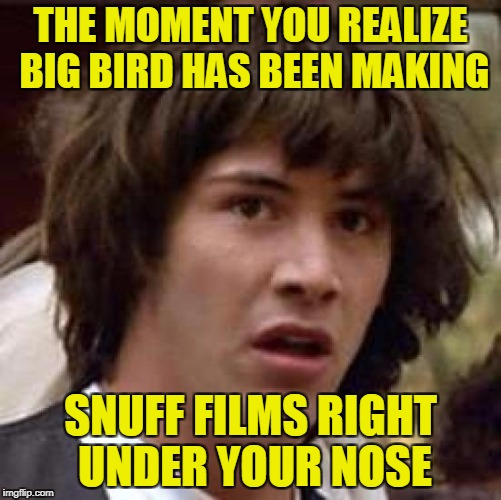 Conspiracy Keanu Meme | THE MOMENT YOU REALIZE BIG BIRD HAS BEEN MAKING SNUFF FILMS RIGHT UNDER YOUR NOSE | image tagged in memes,conspiracy keanu | made w/ Imgflip meme maker
