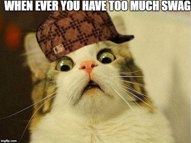 Scared Cat Meme | WHEN EVER YOU HAVE TOO MUCH SWAG | image tagged in memes,scared cat,scumbag | made w/ Imgflip meme maker