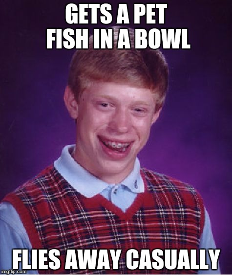 Bad Luck Brian Meme | GETS A PET FISH IN A BOWL FLIES AWAY CASUALLY | image tagged in memes,bad luck brian | made w/ Imgflip meme maker